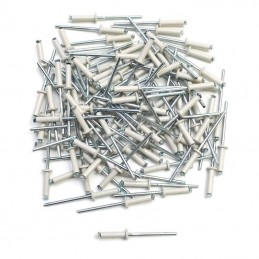 Lot de 100 rivet pop blanc...